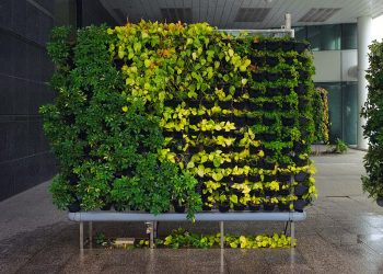 Vertical Greenwall System