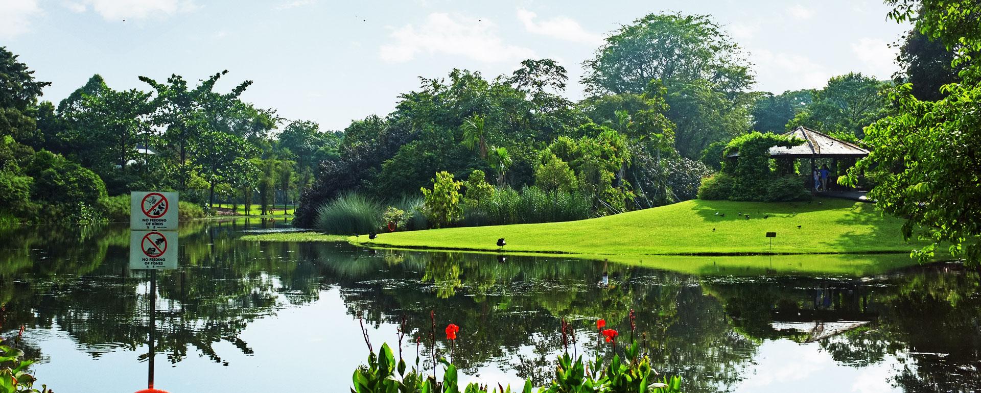 Landscape Contractor Singapore | Landscaping Services - BSG Landscape u0026 Construction