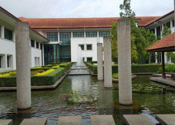 Koi Pond Maintenance