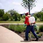 What Is Included In Landscaping Maintenance?