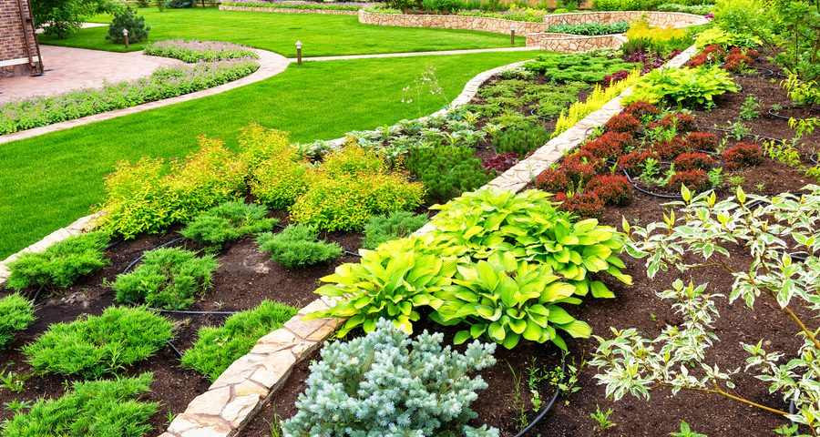 Landscaping panorama of home garden